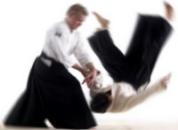 aikido perfectionism